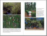 Botanical Wonders color plates