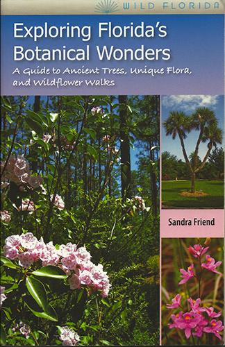 Exploring Florida's Botanical Wonders