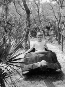 Weeki Wachee, 1960s