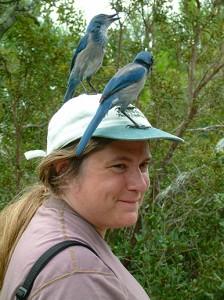 Lyonia Preserve, Florida