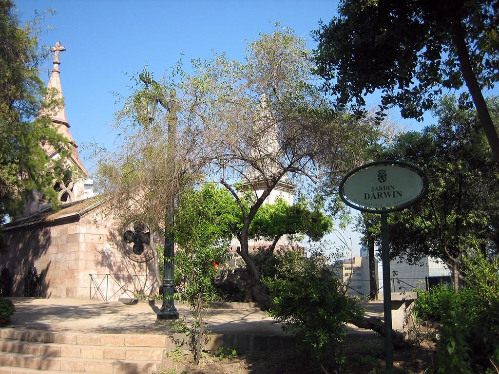 Santiago Darwin Garden Santa Lucia