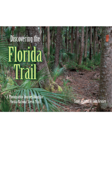 Cover of Discovering the Florida Trail